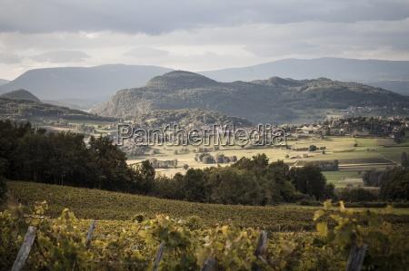 france savoy jongieux rhone valley vineyards