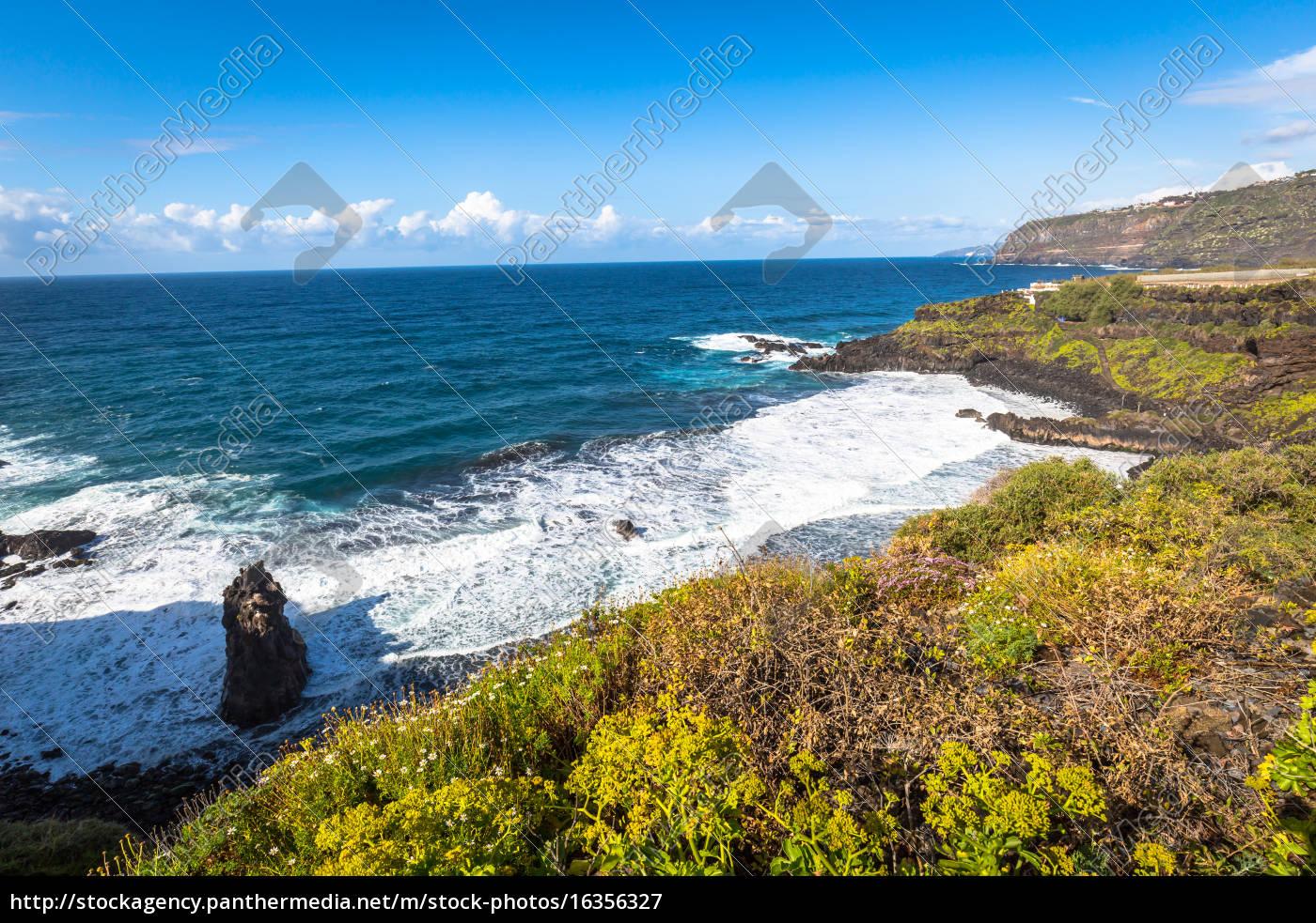 banana, plantation, on, canary, island, tenerife, spain - 16356327