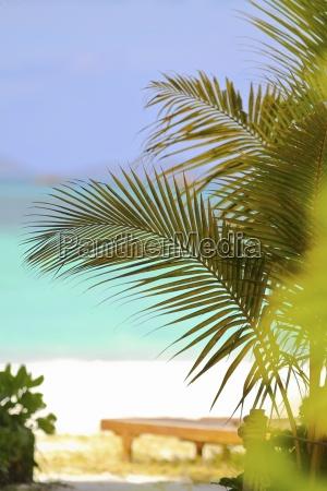 seychelles anse volbert sunlounger at the