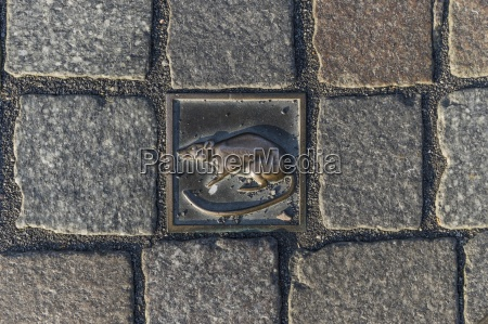 germany lower saxony hameln cobblestone with