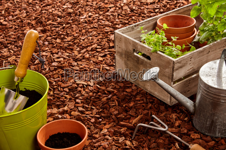gardening tools and seedlings over mulch