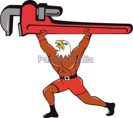 bald eagle plumber monkey wrench isolated