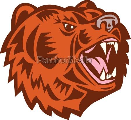 california grizzly bear head growling woodcut