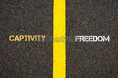 antonym concept of captivity versus freedom