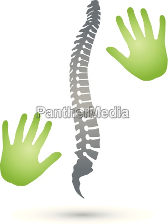 back spine orthopedics hands
