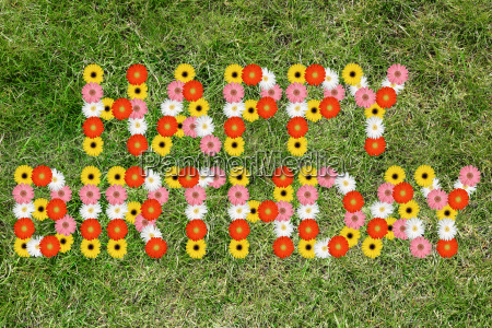 happy birthday anniversary of flower grass