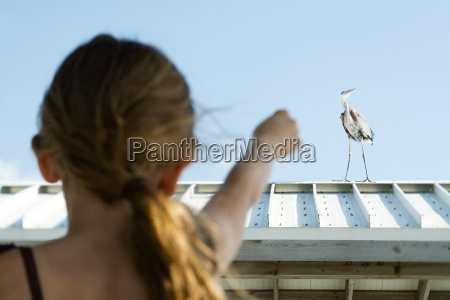 little girl pointing at heron rear