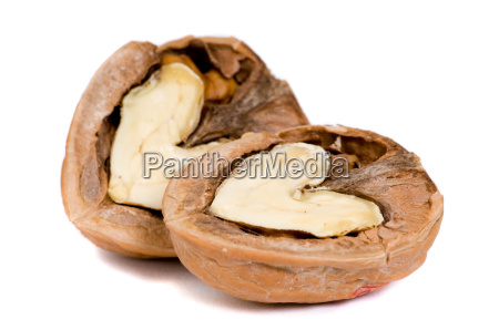 walnuts in love