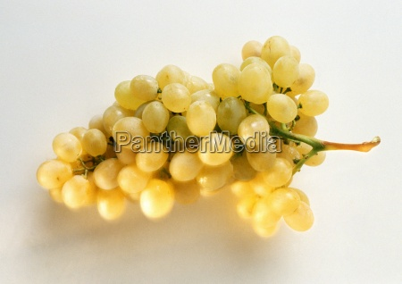 bunch of green grapes close up