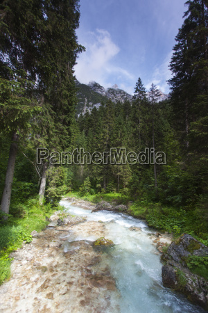 small stream in the bavarian alps