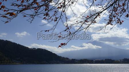 kawaguchiko beautiful fall scenery and background