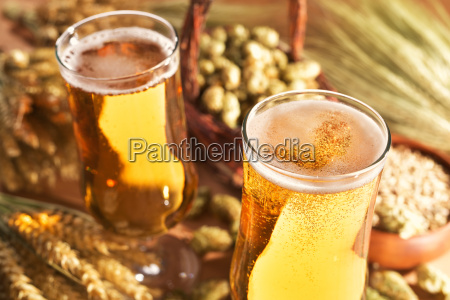 alcohol beer glass beer wheat hop