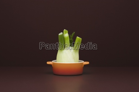 food concept fresh fennel in small