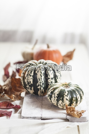 pumpkins and autumn leaves