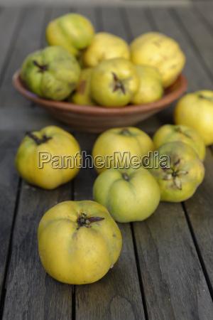 quinces cydonia oblonga on dark wood