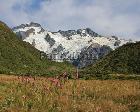 summer in the southern alps