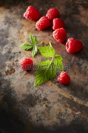 raspberries and leaves