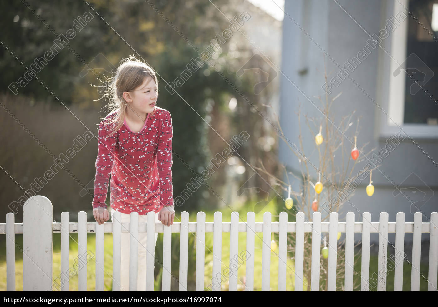 girl, at, garden, fence, glancing, sideways - 16997074