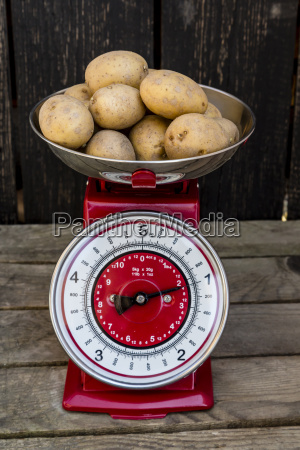 kilogram of potatoes on a kitchen