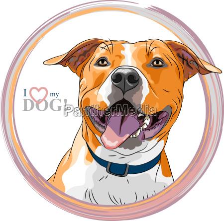 vector sketch smiling dog american staffordshire