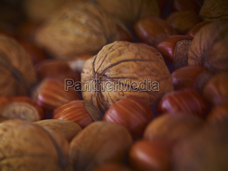 extreme close up of walnuts hazelnuts