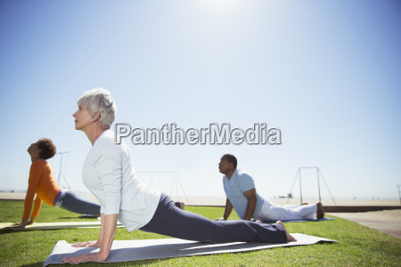 seniors practicing yoga in sunny beach