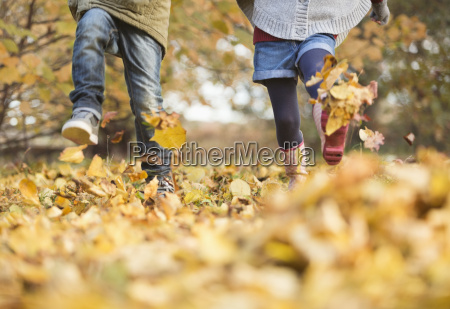 children walking in autumn leaves