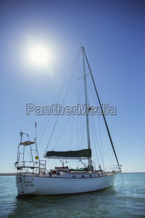 sailboat in water on sunny day