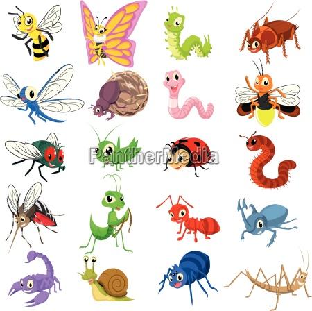 set von insekten cartoon charakter wohnung
