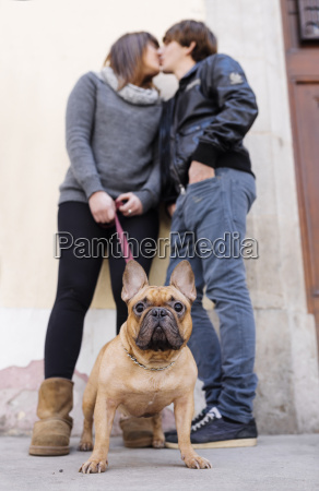 portrait of french bulldog with owners