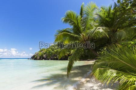 seychelles pointe varreur beach