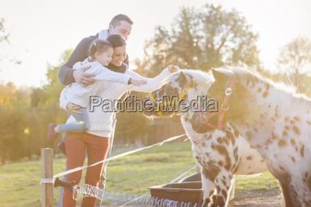 family petting pony on paddock