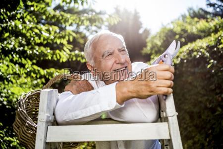 senior man with basket pruner and