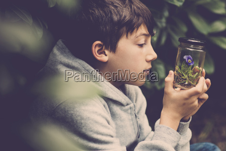 profile of a boy watching pansy