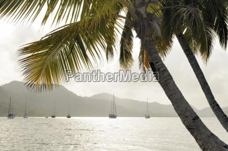 panama isla linton bay with sailing