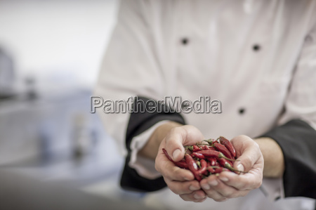 restaurant chef holding red chili peppers
