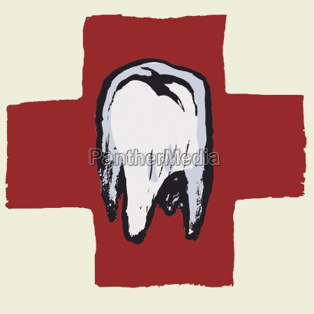 illustrative image of tooth against international