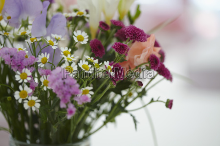 close up of flowers in vase