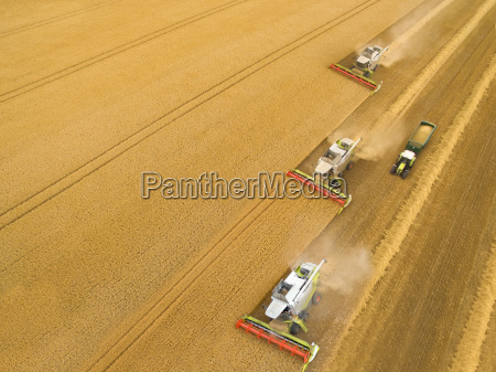 aerial view of combine harvesters in