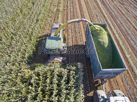aerial view of tractor filling trailer