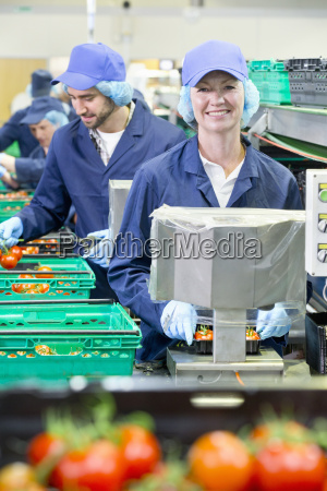portrait smiling worker packing tomatoes in