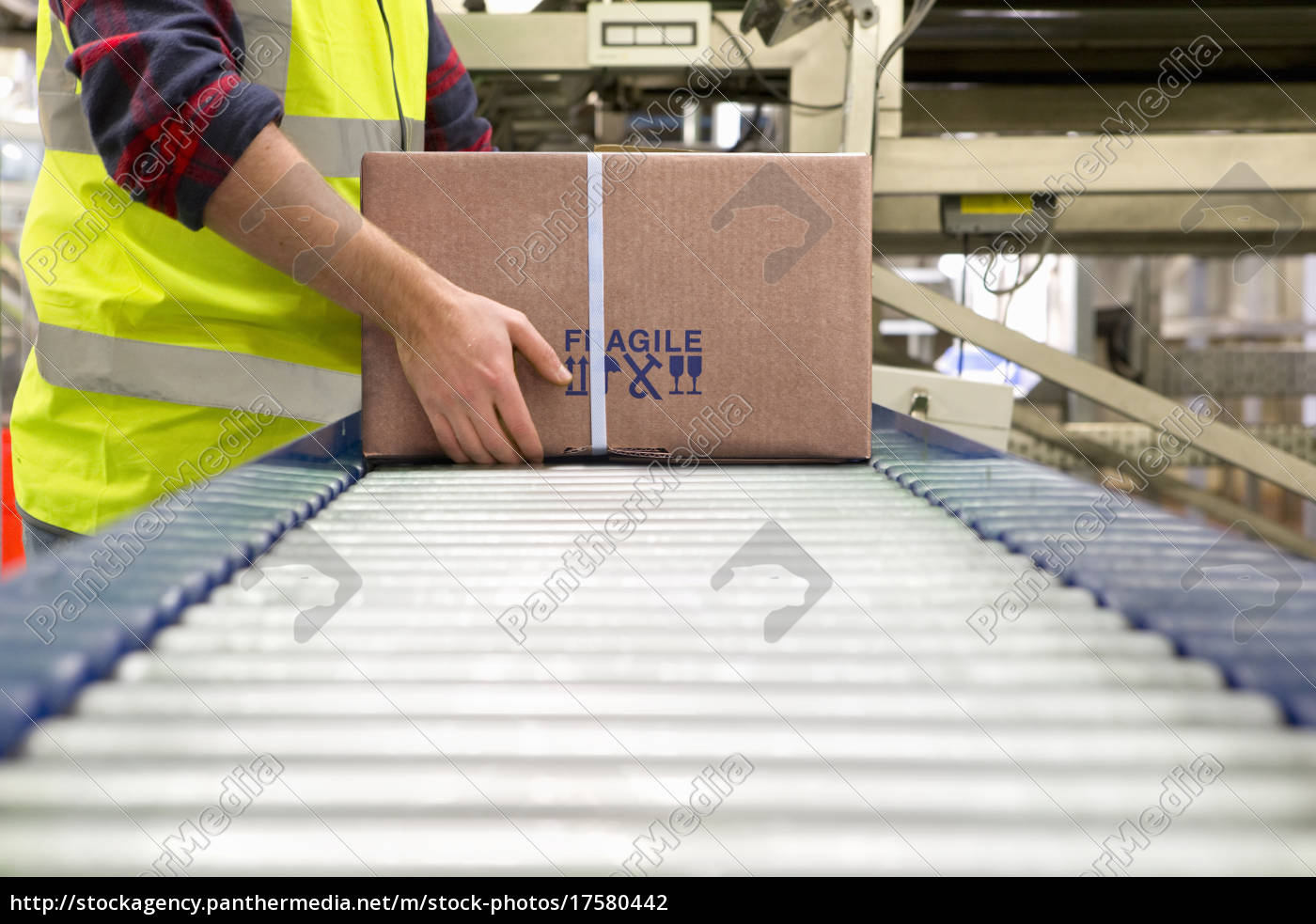 worker, processing, cardboard, box, on, conveyor - 17580442