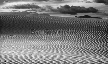 black and white desert landscape white
