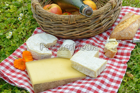 several french cheese with apples and