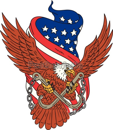 american eagle wings usa flag drawing