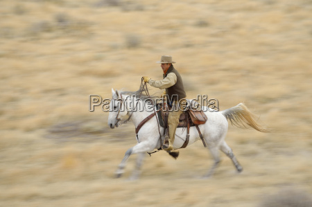 blurred motion of cowboy on horse