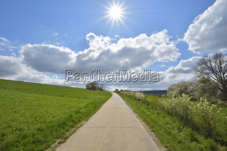 road through field with sun bettingen