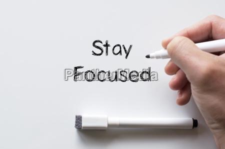 stay focused written on whiteboard