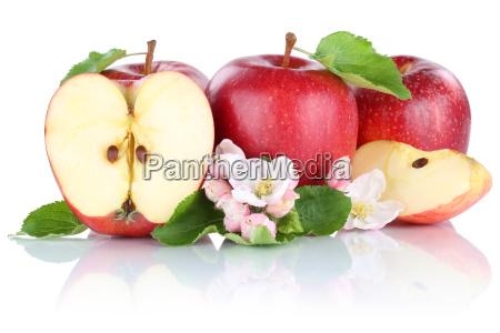 apple apples red fruit fruits cut