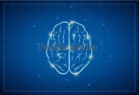 vector brain symbol on bluprint